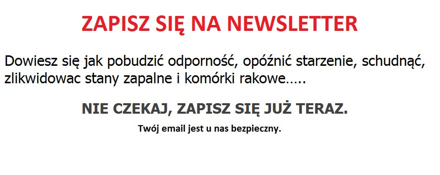 Newsletter od Terapii Sokami